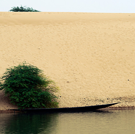 Dune au bord du fleuve