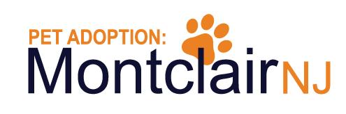 Pet Adoption Montclair NJ