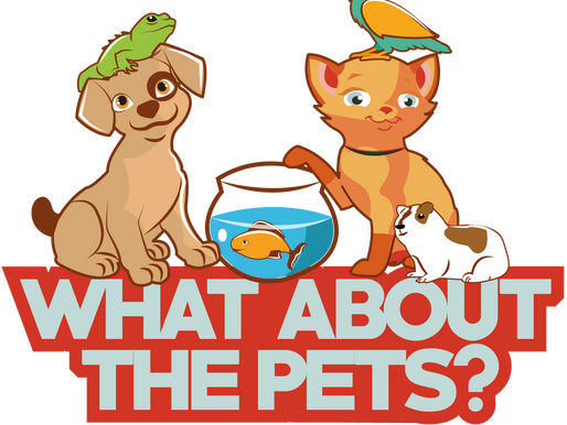 What About the Pets 1st Blog Post!