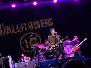 The Wallflowers tour