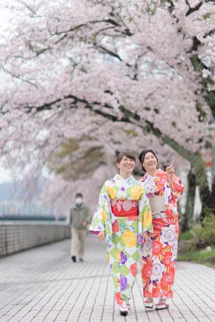 桜が満開です!!🌸