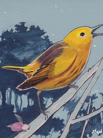 """""""Yellow Warbler"""""""