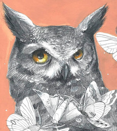 """Dream Visitors: Owl and Moths"""