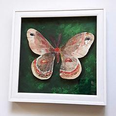 Cecropia Moth Art by Steph Holmes