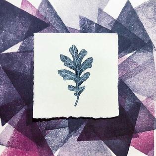 White Oak Leaf_small.jpg