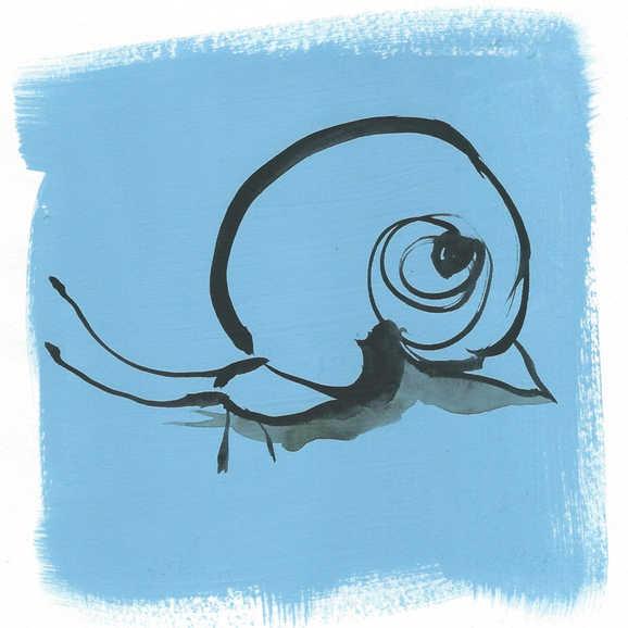 """""""Blue Snail"""""""
