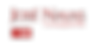 Logo Flak.png