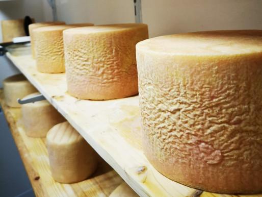Warum ist unsere Ziegenmilch und unser Käse besonders?