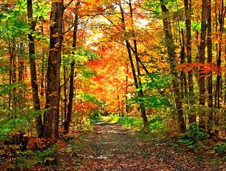 hiking-biking-trails.jpg
