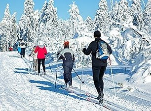 cross-country-skiing-330x250-3766.jpg