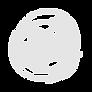 Elite-Teakwondo-Logo-white.png