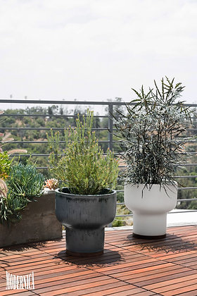 Modernica, Mushroom Plant Pots