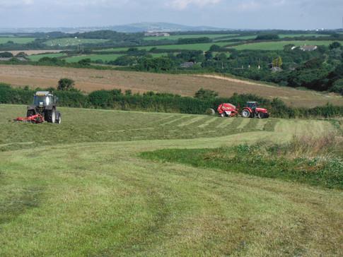 Tregaddra Farm