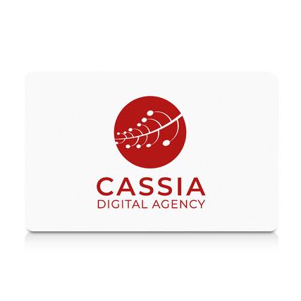 Cassia Digital Agency