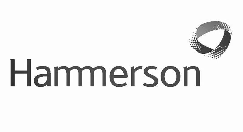 hammerosn_edited