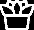 Succulent Vector.png
