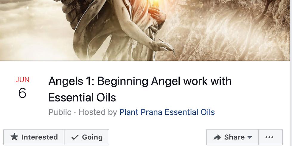 Angels 1: Beginning Angel work with essential oils.