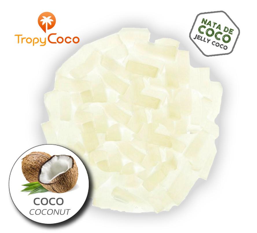 Que es Nata de Coco
