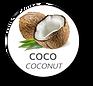 NATA-DE-COCO-JELLY-COCO-COCO-PINEAPPLE.p