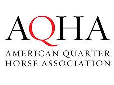 AQHA-News-300x225.jpg