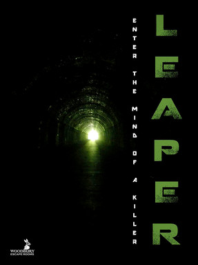 "Woodbury Escape Rooms - ""Leaper"""