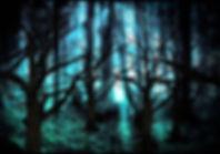 the-forbidden-forest_edited.jpg