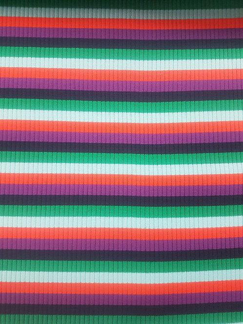 Rainbow Stripe Rib Knit