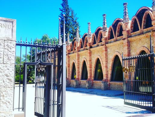 Кодернью - легендарное хозяйство, где впервые была создана Кава