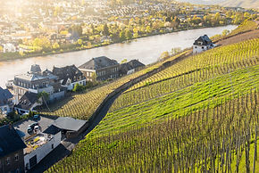 Mosel-Germany_GettyImages-536672342.jpg