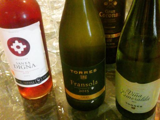 На дегустации вин Торрес в Пенедесе
