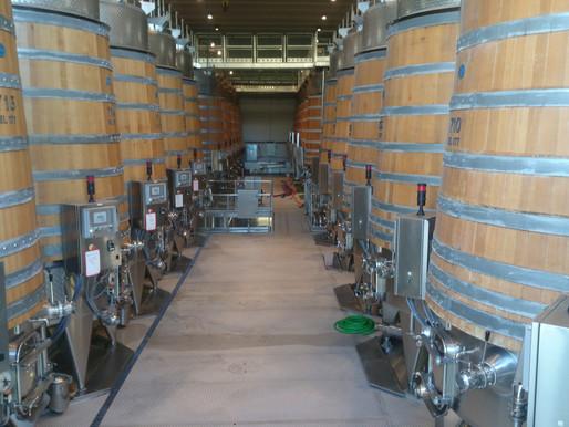 На дегустации вин в Кастелло Банфи