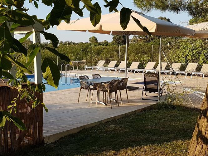 Pool grass terrace