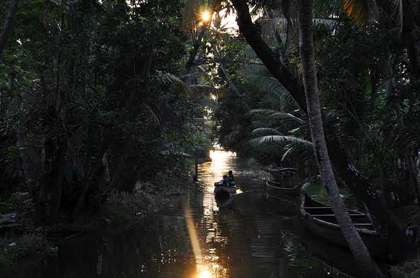 Backwaters, Alappuzha, Kerala, Inde