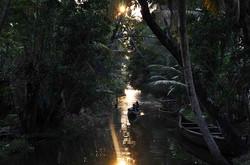 Backwaters, Alappuzha, Kerala, Inde