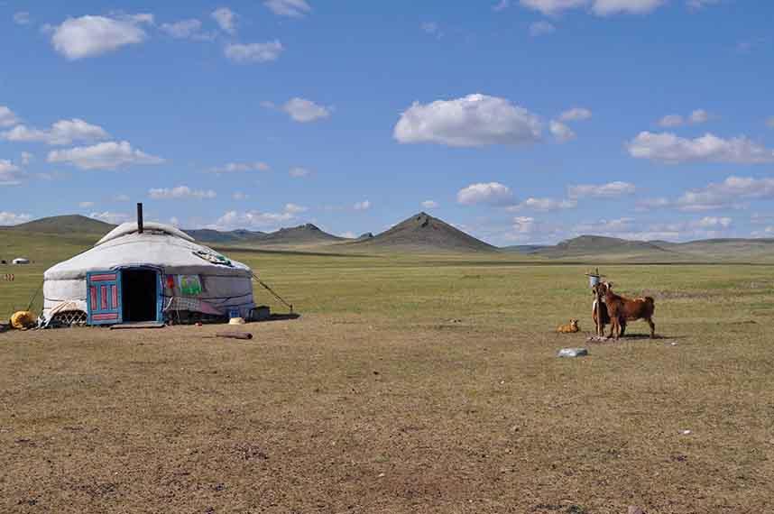 Plaine de Mongolie