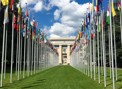 The Effectiveness of The United Nations in Protecting Human Rights
