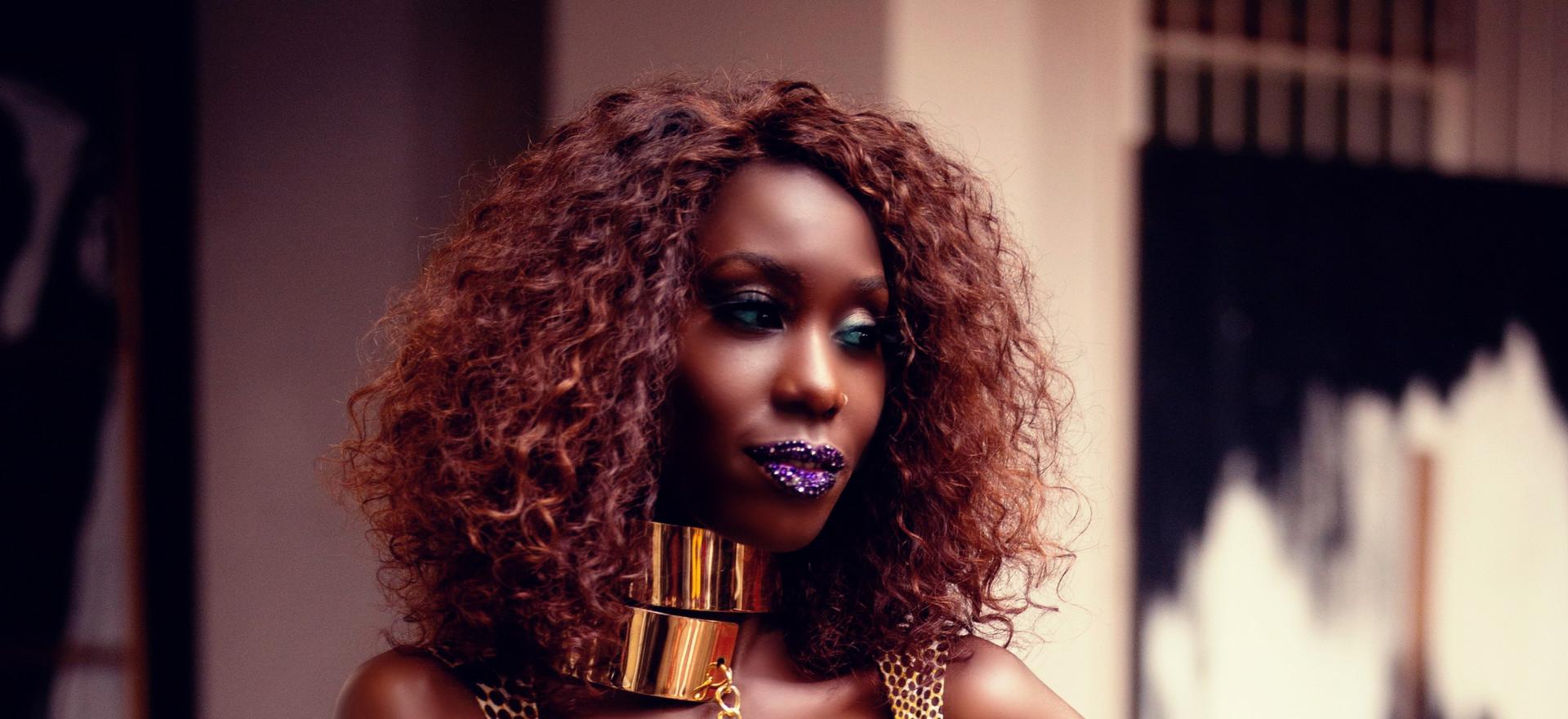 Liz Ogumbo Phoenix Rising fashion 13.jpg