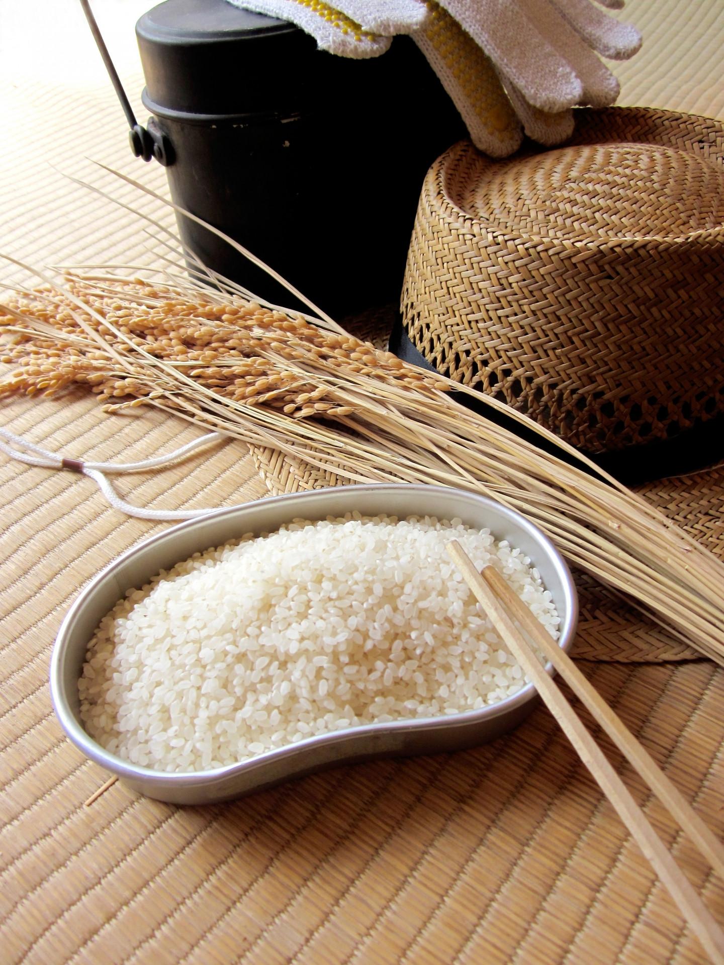 『郡上の美味しいお米コンテスト』入賞の新米を飯ごうで炊いてみよう!