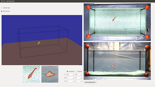 GUI Fischtracking des Virtual Fish Project