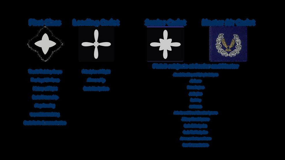 Air Cadet Classifications