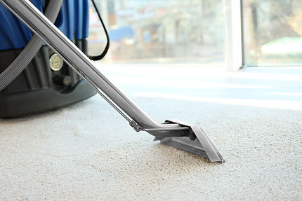 Carpet Cleaning grand rapids mi