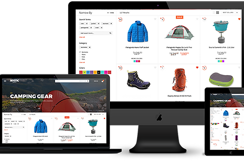 Professional E-Commerce Package