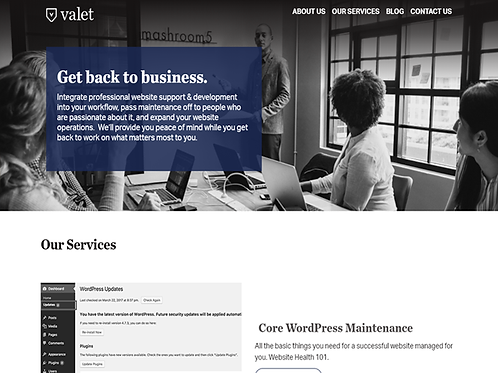 Basic Web Maintenance Package
