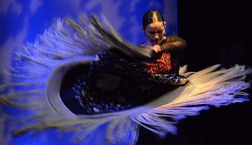 Flamenco Dance Show.jpg