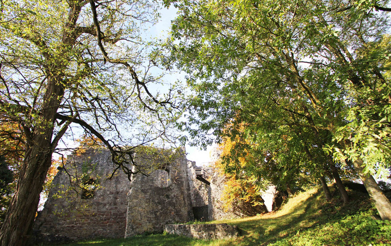 Ruine Homburg