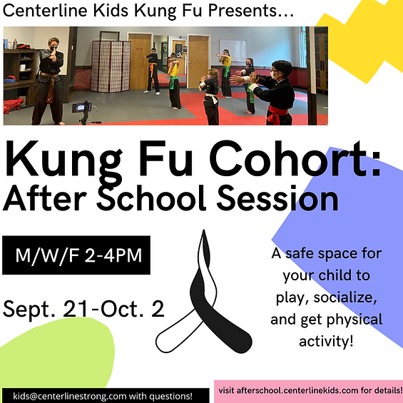 Kung Fu Cohort_ After School Sessions (1