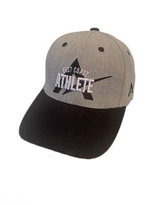 Two Tone Snap Back