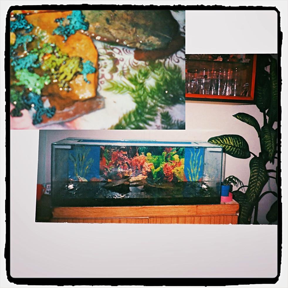 archive photo (1995?)