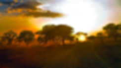 LEIP-Sunrise-Limpopo.jpg