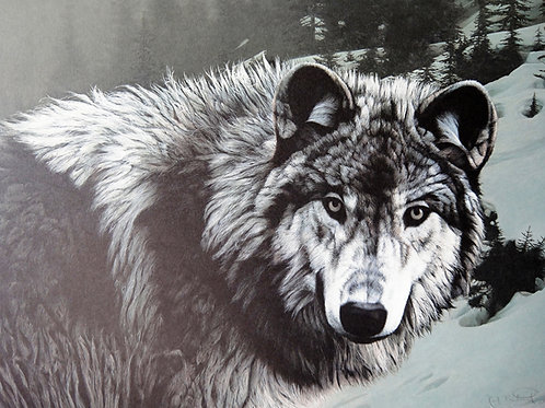 """""""Timber Ghost"""" by Ron Frederick, LE Print"""